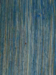 Cape Cod Blue Wood Stain